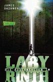 Maze Runner - Im Labyrinth / Die Auserwählten Trilogie Bd.1
