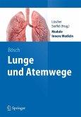 Lunge und Atemwege