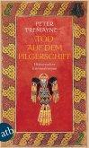 Tod auf dem Pilgerschiff / Ein Fall für Schwester Fidelma Bd.9