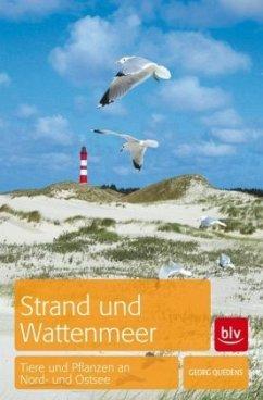 Strand und Wattenmeer - Quedens, Georg