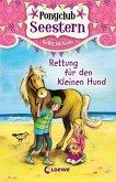 Rettung für den kleinen Hund / Ponyclub Seestern Bd.1