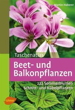 Taschenatlas Beet- und Balkonpflanzen - Haberer, Martin