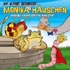 Warum haben Kröten Warzen?, 1 Audio-CD / Die kleine Schnecke, Monika Häuschen, Audio-CDs Bd.31