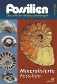 Mineralisierte Fossilien