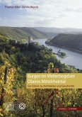 Burgen im Welterbegebiet Oberes Mittelrheintal