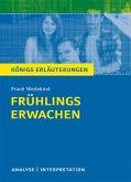 Frühlings Erwachen von Frank Wedekind.