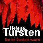 Der im Dunkeln wacht / Kriminalinspektorin Irene Huss Bd.9 (MP3-Download)