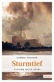 Sturmtief (eBook, ePUB)