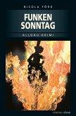 Funkensonntag / Kommissar Weinzierl Bd.2 (eBook, ePUB)