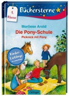 Picknick mit Pony / Die Pony-Schule Bd.4