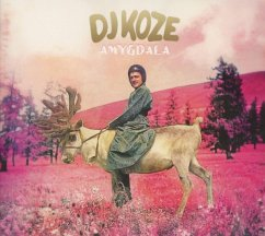 Amygdala - Dj Koze