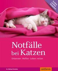 Notfälle bei Katzen - Streicher, Michael
