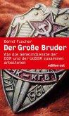 Der große Bruder (eBook, ePUB)