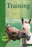 Training Your Foal (eBook, ePUB)