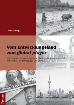 Vom Entwicklungsland zum global player (eBook, PDF) - Ludwig, Daniel