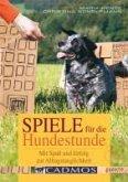 Spiele für die Hundestunde (eBook, ePUB)