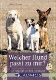 Welcher Hund passt zu mir? (eBook, ePUB)