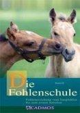 Die Fohlenschule (eBook, ePUB)