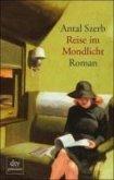 Reise im Mondlicht (eBook, ePUB)