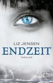 Endzeit (eBook, ePUB)