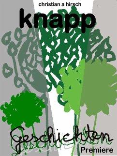 Knappgeschichten (eBook, ePUB) - Hirsch, Christian A