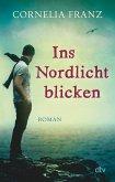 Ins Nordlicht blicken (eBook, ePUB)