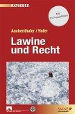 Lawine und Recht (eBook, PDF)
