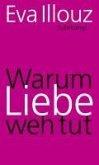 Warum Liebe weh tut (eBook, ePUB)