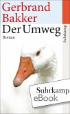 Der Umweg (eBook, ePUB)