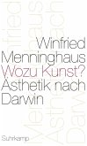Wozu Kunst? (eBook, ePUB)