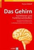 Das Gehirn (eBook, PDF)