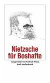 Nietzsche für Boshafte (eBook, ePUB)