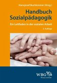 Handbuch Sozialpädagogik (eBook, ePUB)