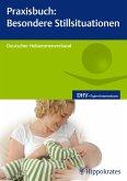 Praxisbuch: Besondere Stillsituationen (eBook, PDF)