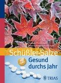 Gesund durchs Jahr mit Schüßler-Salzen (eBook, ePUB)