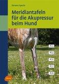 Meridiantafeln für die Akupressur beim Hund (eBook, PDF)