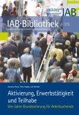Aktivierung, Erwerbstätigkeit und Teilhabe (eBook, PDF)