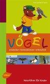 Naturführer für Kinder: Vögel (eBook, ePUB)