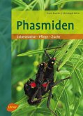 Phasmiden (eBook, PDF)