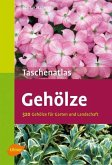 Taschenatlas Gehölze (eBook, PDF)