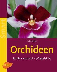 Orchideen (eBook, PDF) - Röllke, Lutz