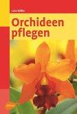 Orchideen pflegen (eBook, PDF)