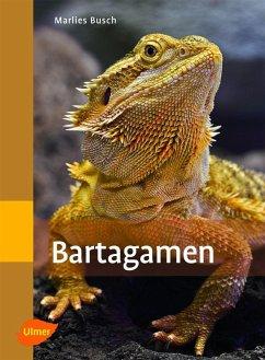 Bartagamen (eBook, ePUB) - Busch, Marlies