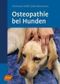 Osteopathie bei Hunden (eBook, PDF)