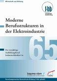Moderne Berufsstrukturen in der Elektroindustrie (eBook, PDF)