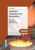 Induktives Schmelzen und Warmhalten (eBook, PDF)