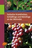 Farbatlas Krankheiten, Schädlinge und Nützlinge an der Weinrebe (eBook, PDF)