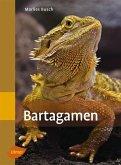 Bartagamen (eBook, PDF)
