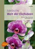 Fabelhafte Welt der Orchideen (eBook, PDF)