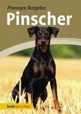 Pinscher (eBook, PDF)